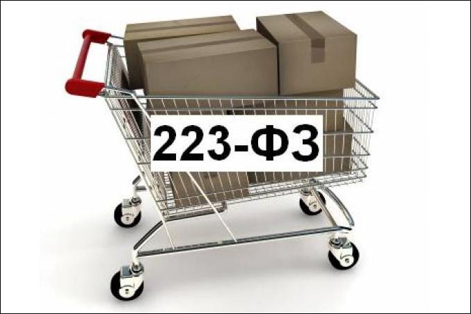 Федеральный Закон №223-ФЗ